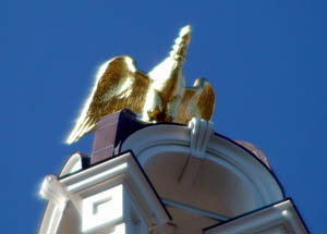 Lawrence City Hall Eagle